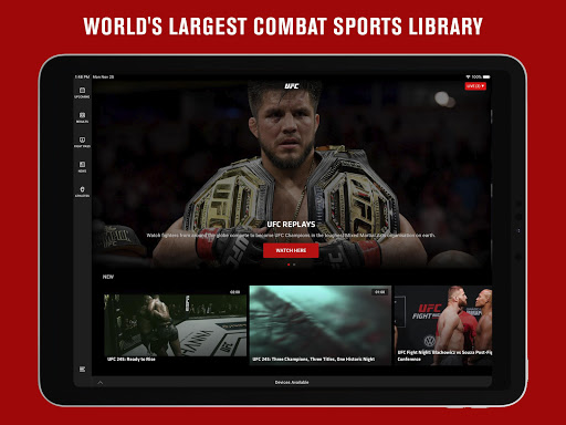 UFC screenshot 15