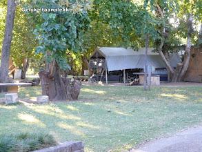 Photo: Ons kamp tussen die bome
