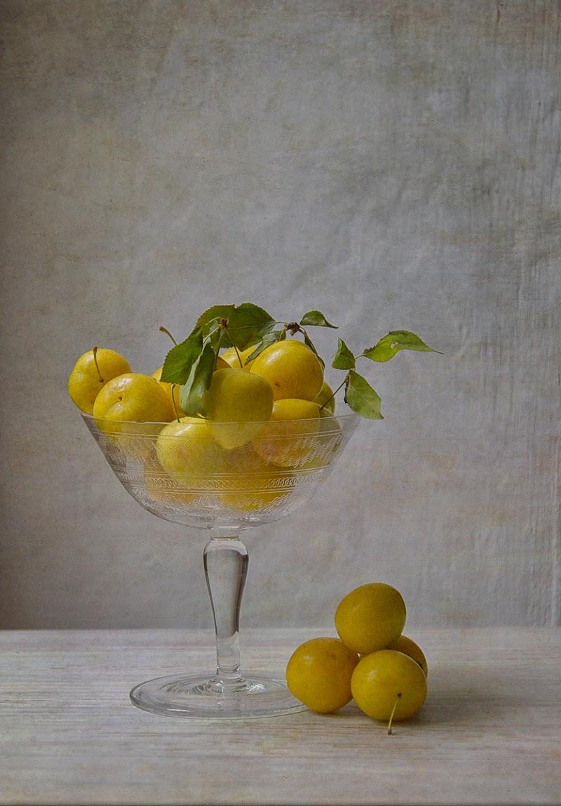 Yellow plum di Erato