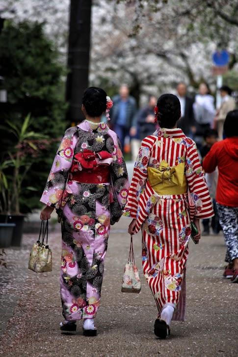 spacer filozofa, ścieżka filozofa, Kioto