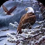 Eagle Wallpaper Icon