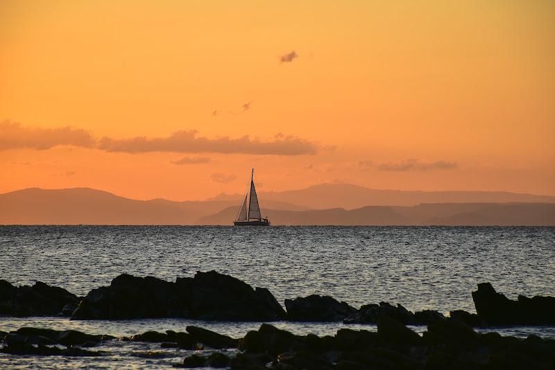 veleggiando verso l'Asinara di lorella