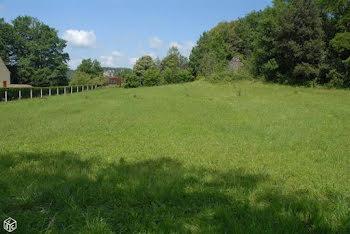 terrain à La Roque-Gageac (24)