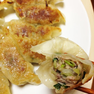 Crunchy Gyoza Dumplings with large pieces of Vegetables