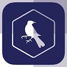 SF - Tottenham Edition icon