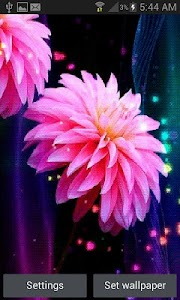 Pink Flowers Shine LWP screenshot 0