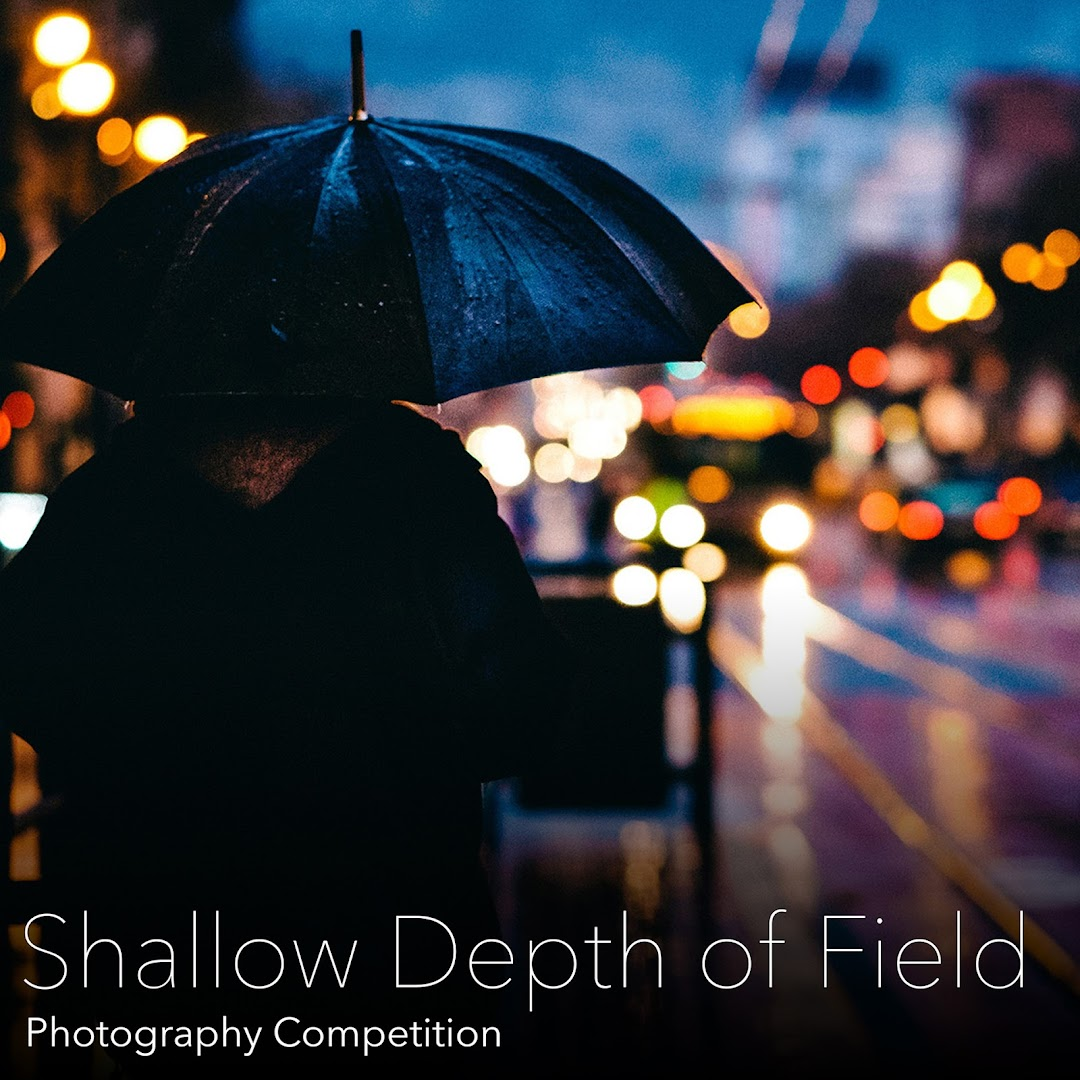 Shallow Depth Of Field Photography Competition. Submit your photos using the most common and amazing technique of creating amazing photos, also called Bokeh
