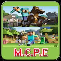 M.C.P.E 1.0