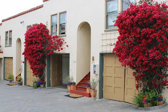 Photo: The courtyard of the Marina Motel, where we stayed, was so pretty.