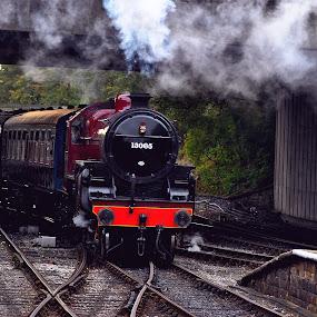 Grand  entry by Gordon Simpson - Transportation Trains