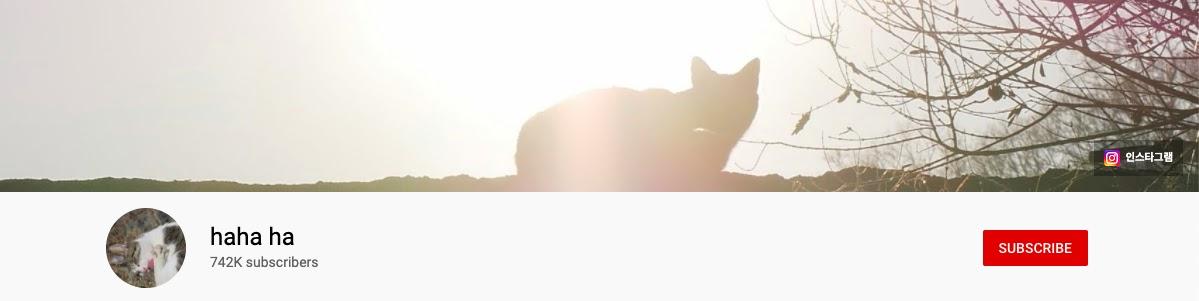 Screen Shot 2020-06-22 at 4.13.19 PM