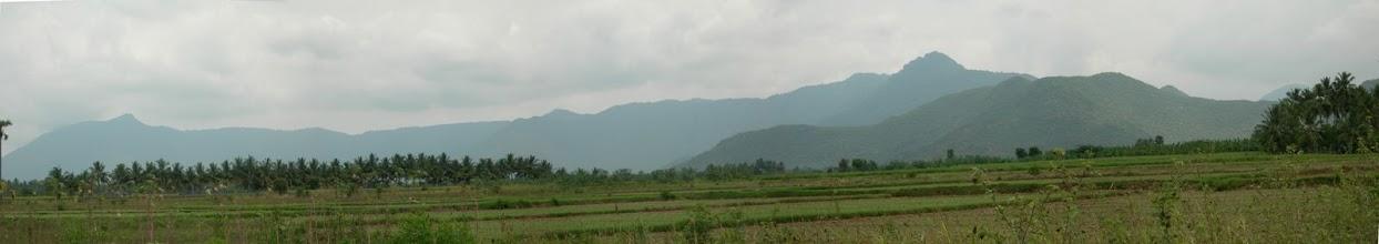 Photo: panoramic view of pachamalai. http://sdbotany.blogspot.in