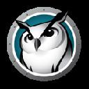 DownloadInsight Web Helper Extension