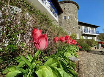 château à Villecomtal-sur-Arros (32)