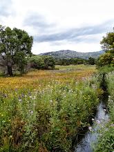 Photo: Petit canal d'arrosage à Mas Baleta