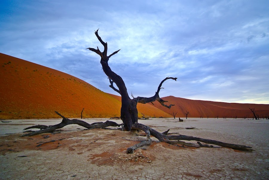 by Gorazd Golob - Landscapes Deserts