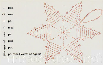 Photo: Estrela-gráfico