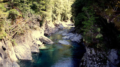 Photo: We have been traveling over Haast Pass to get to the west coast of the South Island.   Notice the clear, aqua water of the Kaast River.