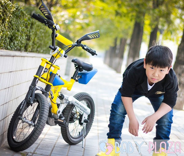 Xe đạp trẻ em Royalbaby B-3 2