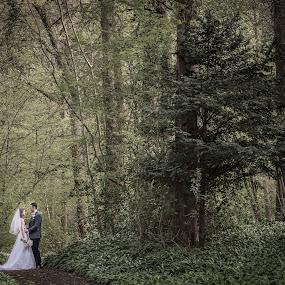 Epic Weddingscape by Nigel Hepplewhite - Wedding Bride & Groom ( love, dress, flowers, woods, epic, wedding, ethereal, landscape )