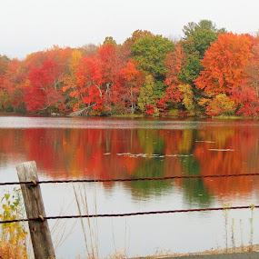 Reflections in red by Janice Burnett - Landscapes Waterscapes ( water, orange, red, nature, fall colors, autumn, green, outdoors, fall, reflections )