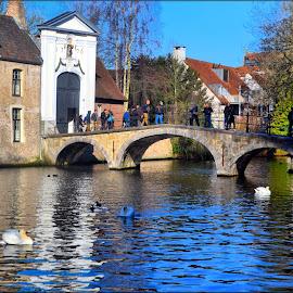 Brugge by Nic Scott - City,  Street & Park  Vistas ( brugge, canal, bridge, belgium, water )