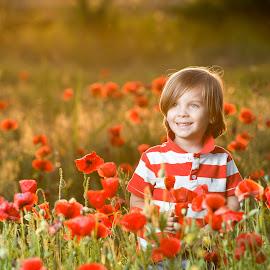 Filip by Miodrag Stojanovic - Babies & Children Child Portraits ( baby boy, poppy field, children, kids )