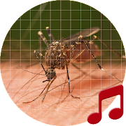 Mosquito Sounds ~ Sboard.pro