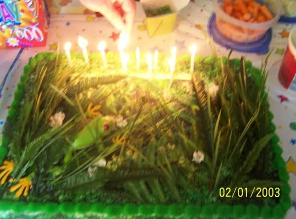 Donna's Rain Forest Red Eyed Tree Frog Cake