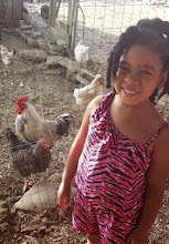 Photo: Yaz with the chickens