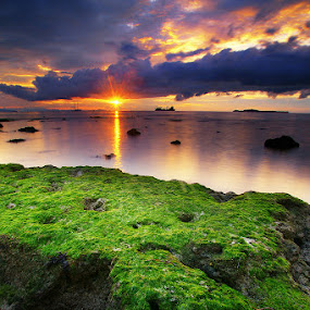 With My Sun by Faried Kactoez - Landscapes Sunsets & Sunrises