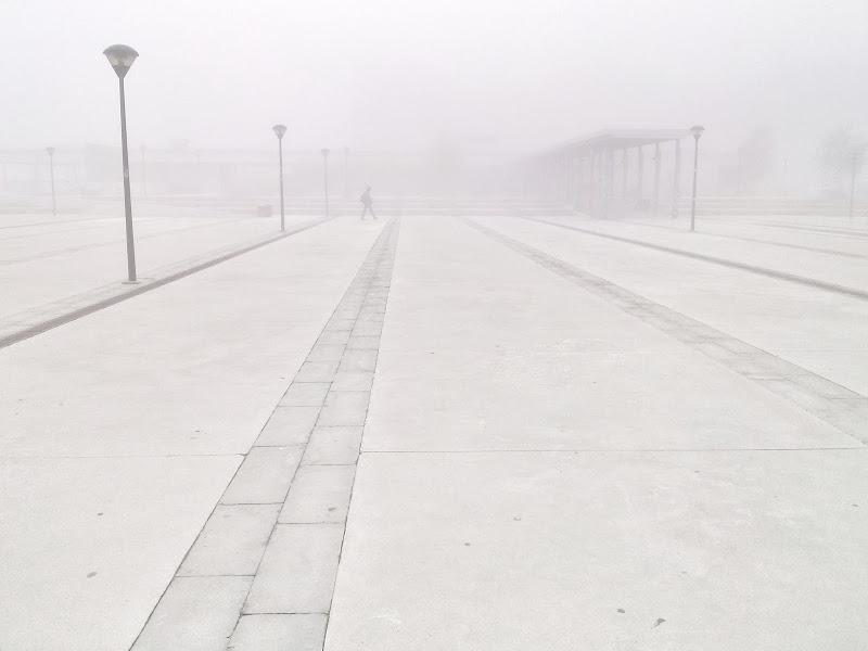 Winter Walking di M.Faini