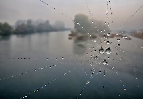 kapljice na Uni by Dunja Kolar - Nature Up Close Water ( croatia, hrvatska kostajnica, rijeka una, kapljice )