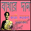 ব্যথার দান icon