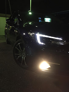 インプレッサ スポーツ GT6 2.0i-L Eyesightのカスタム事例画像 車好き初心者🔰さんの2019年01月15日12:30の投稿