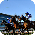 Betalyst Horse Racing Tips icon