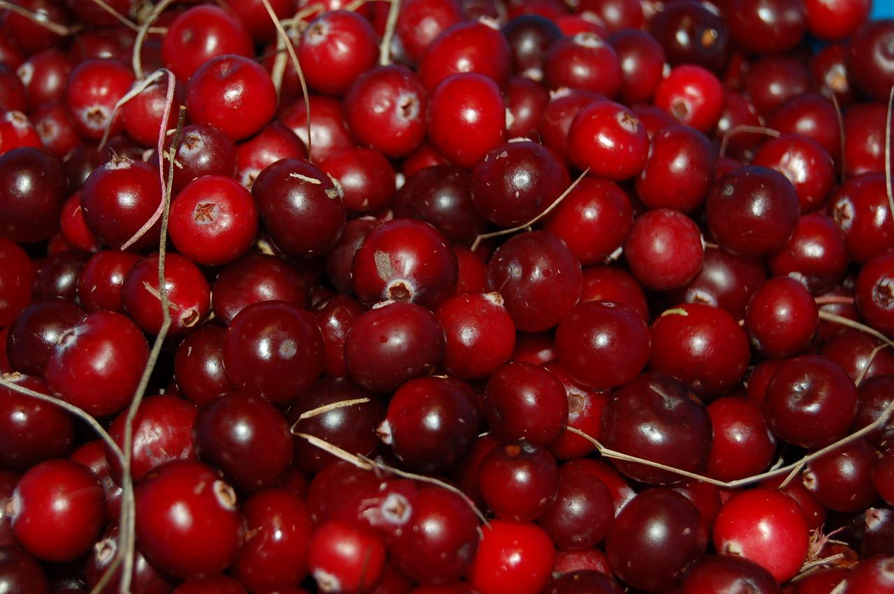 cranberries-1714174_1280.jpg