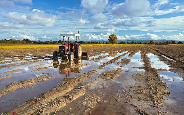 Dopo la pioggia di Dariagufo