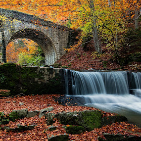 autumn dream by Naiden Bochev - Buildings & Architecture Bridges & Suspended Structures ( water, mountain, autumn, waterscape, outdoor, waterfall, forest )