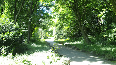 Photo: Östlicher Zugangsbereich zum Buschey-Park.