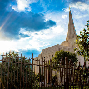 Sunlit Temple  by LaDawn Park - Buildings & Architecture Places of Worship
