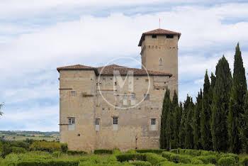 Château 8 pièces 450 m2