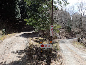 林道分岐(左から来た)