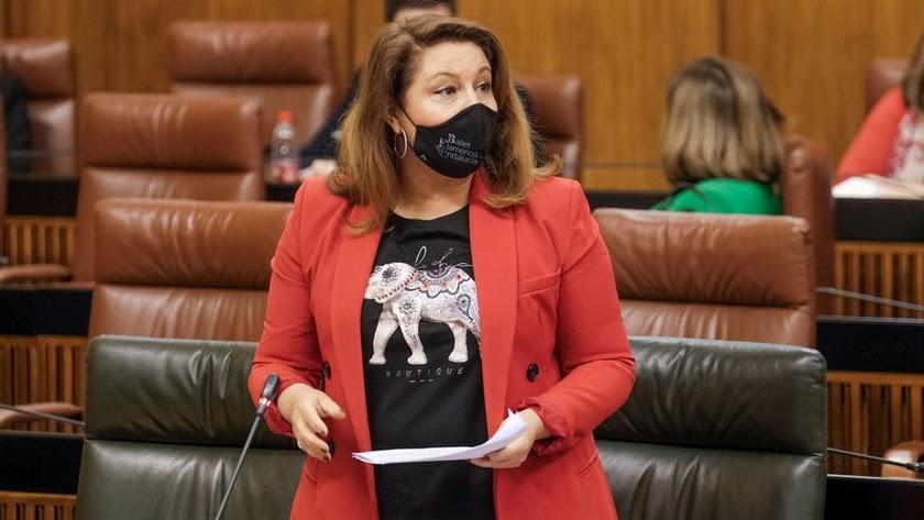 La consejera Carmen Crespo ha intervenido en el Parlamento de Andalucía.
