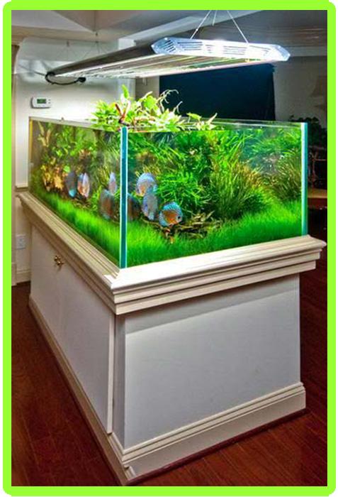 aquarium modern design android apps on google play. Black Bedroom Furniture Sets. Home Design Ideas