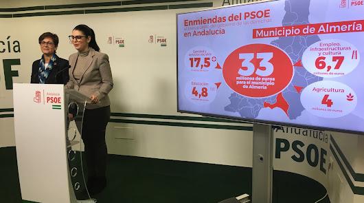 Materno Infantil: el PSOE pide 12 millones a la Junta para 2020