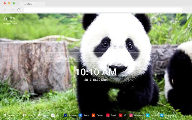 Panda New Tab Page HD Wallpapers  Themes