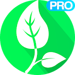 Vegetarian and Vegan Recipes Pro icon