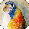 Paint watercolor. 🐟🐞🐕Water paint icon