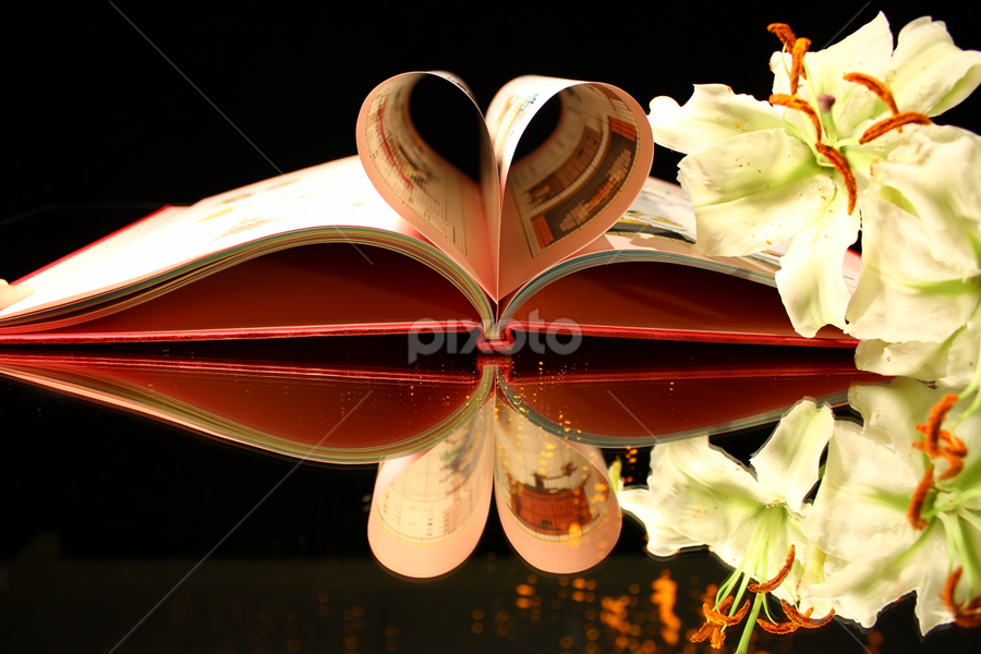 Reflection of a heart and flower by Dipali S - Artistic Objects Other Objects ( books, reading, lovers, heart, still life, pages, occasion, holidays, education, valentine, leaves, business, love, friends, school, window, lily, page, event, book, summer, garden, flower )